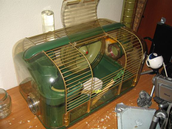 Picture of Lucy's cage after cleaning, almost ready.
