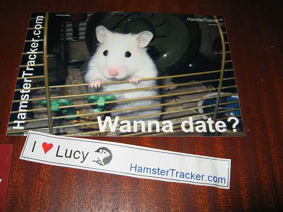 Lucy promotion in Eindhoven, the Netherlands.