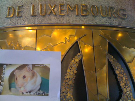 Exreme HamsterTracking Luxembourg by Miriam.